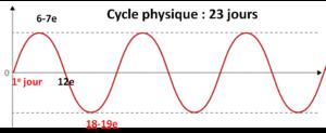 Rythme physique